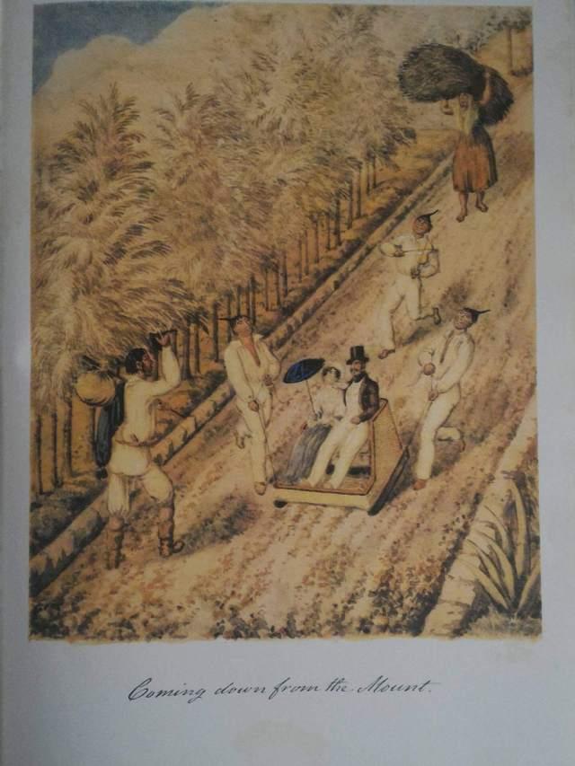Curiosidades de uma viagem à Madeira, em 1853