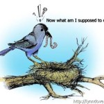 Leaving the nest – are you ready?
