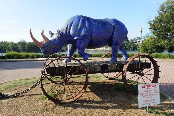 Chattanooga Blue Rhino
