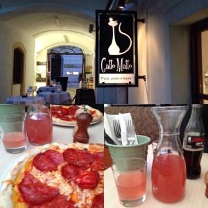 eating in Bratislava - Gatto Matto
