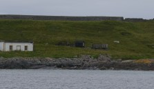 Grey seals on the shore of the Orsay island in front of Portnahaven (Photo by Elina Mäntylä)