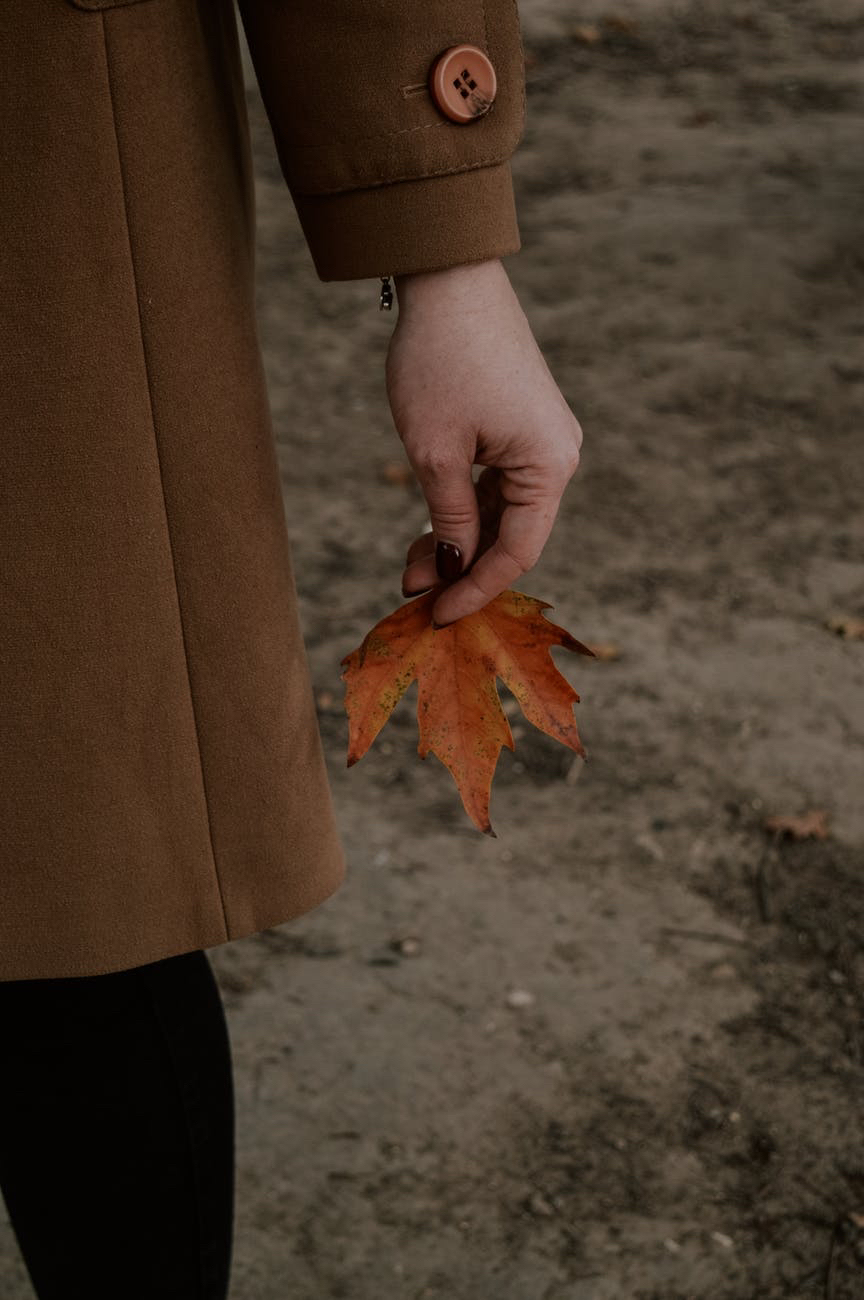 What we can learn from the seasons.