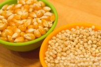 Popcorn kernels on the left; sorghum grains on the right.