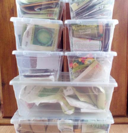 Seed organization, seeds are organized by catagory and placed in plastic containers