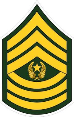 command_sergeant_major_csm.jpg