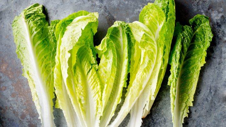 romaine-salad-videoSixteenByNineJumbo1600