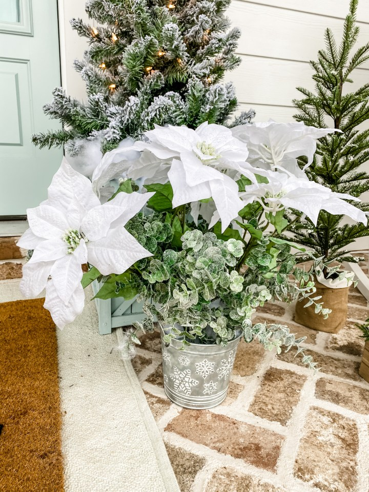 White Christmas Poinsettias