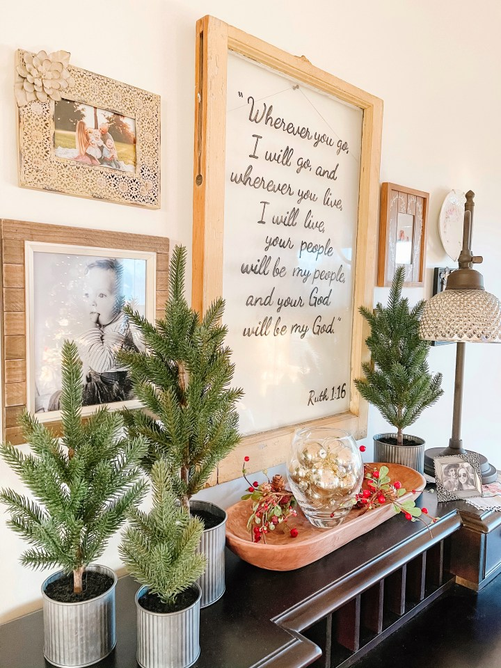Christmas trees of varying sizes