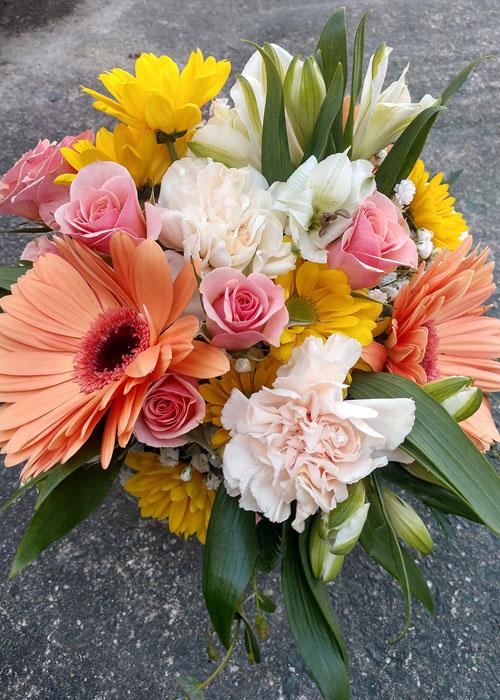 gerbera daisies, carnations, spray roses and alstromeria