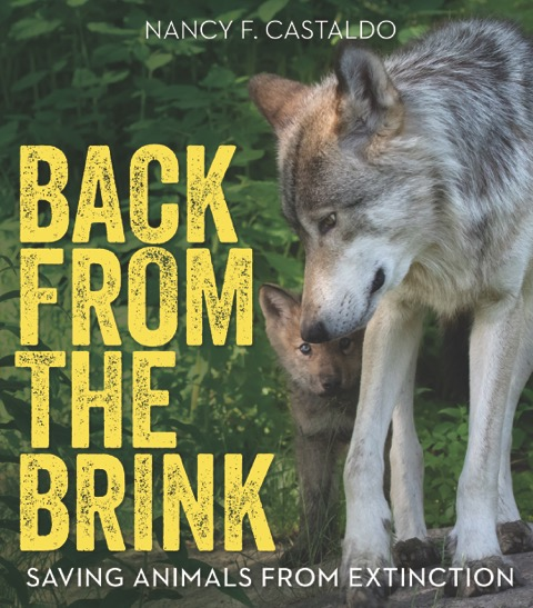 STEM Tuesday All About Conservation - Interview with Author Nancy Castaldo