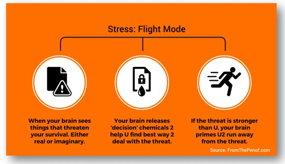 stress fight response info graph  red flag behaviour change from the pen of