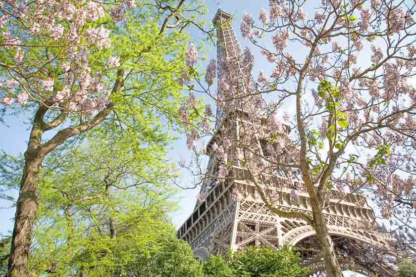 Paris_Eiffel_Tower_spring