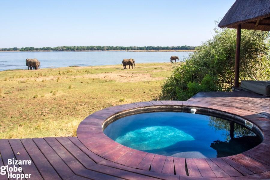 Royal Zambezi, a safari lodge in Zambia with private plunge pool.