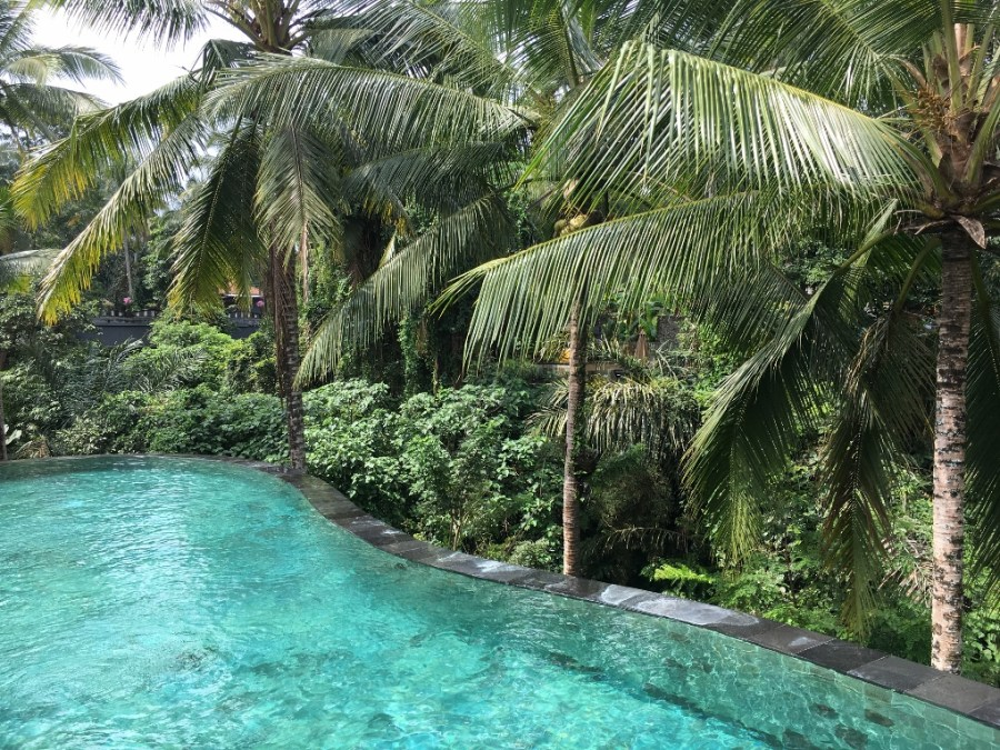 Wapa di Ume, ubud, one of the hotels with pools recommended by travel bloggers. Check the post for more hotels with pools.