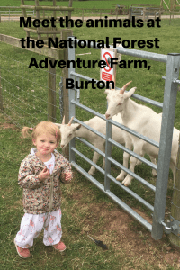 Meet the animals at the National Forest Adventure Farm Burton 200x300 - National Forest Adventure Farm, Burton.