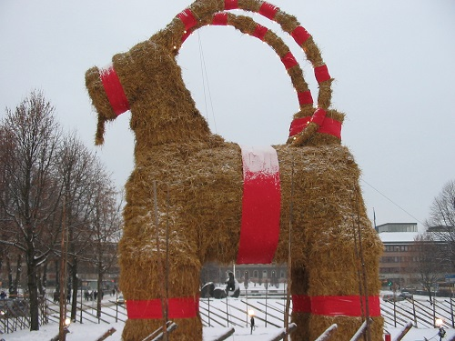 Christmas Goat - Yule Goat, will it make it to Christmas?