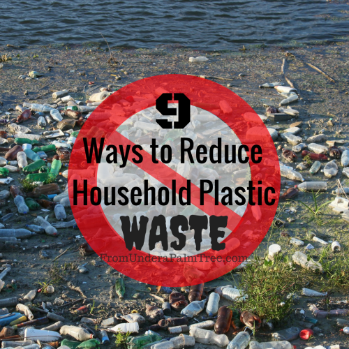 9 Ways to Reduce Household Plastic Waste by From Under a Palm Tree