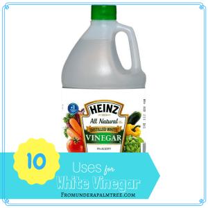 10 Uses for White Vinegar