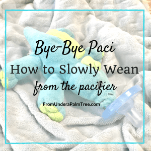 Bye Bye Paci- How to Slowly Wean from the Pacifier