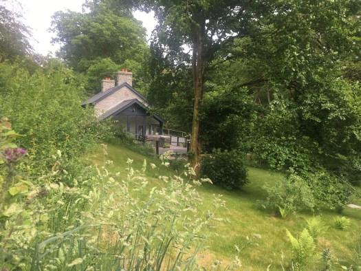 natural-garden-fron-cottage-rhayader-2017
