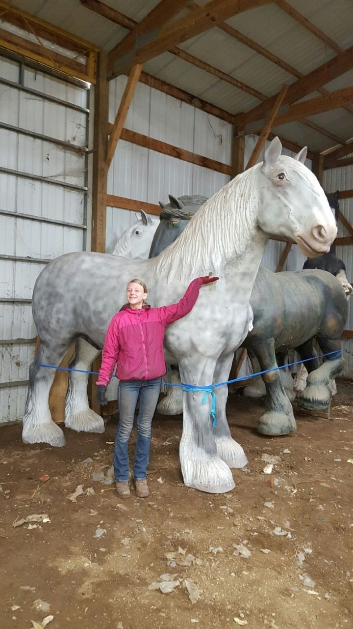 Eb F Eba Ad F C C Ff Horse Coloring Pages Horse Anatomy also Parts I as well S C I W likewise X together with . on horse english saddle parts