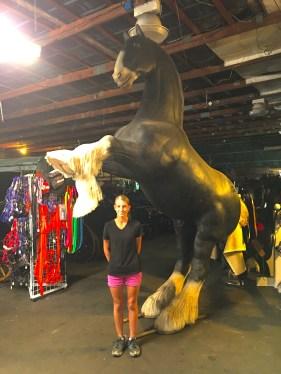 Frontier Equestrian