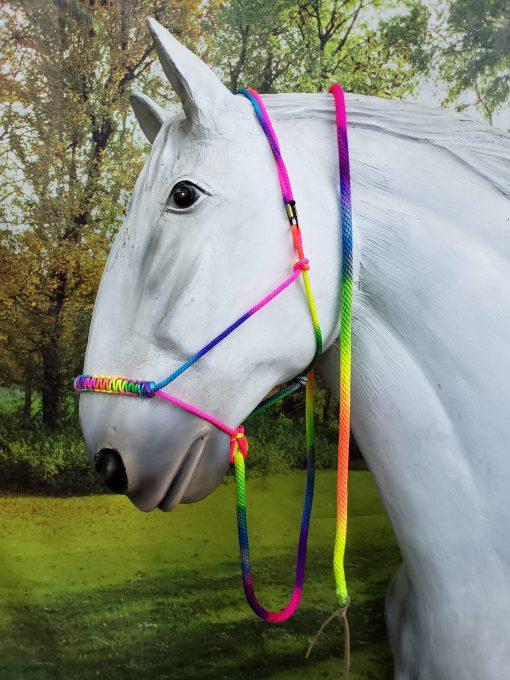 rainbow rope halter