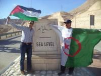 algerie-palestine2