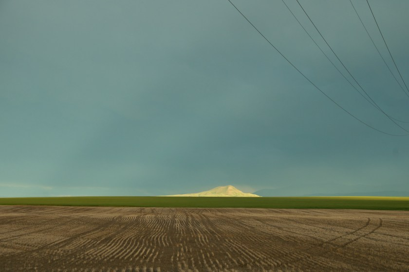 Wheat stubble and sunlit hill on the Montana prairie