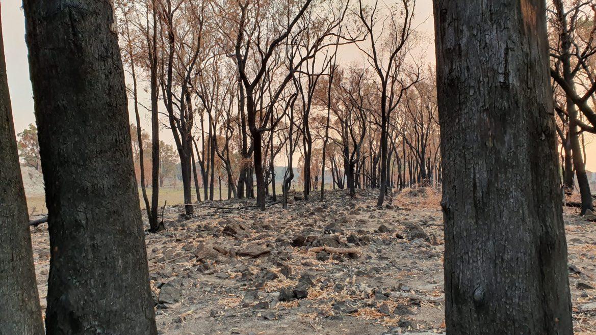 Volunteers respond to farmer's bushfire emergency