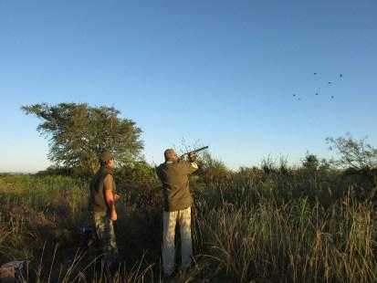 Dove Shooting in Cordoba