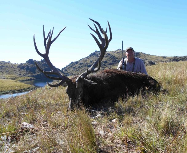 "Bob H. with a heavy 331"" stag"