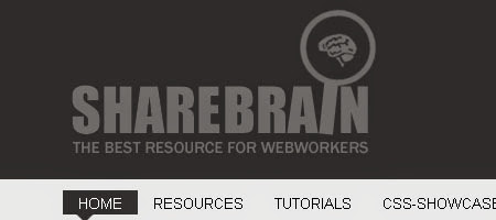 Sharebrain is a website that shares many useful resources for web developers