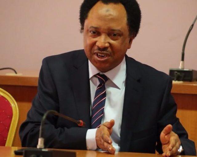 APC may cease to exist after Buhari –Shehu Sani