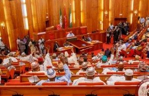 Senate passes bills Buhari declined assent