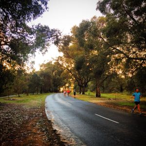 As our tempo run aims to enhance our muscular endurance, adding some rolling hills into the run can be a great addition if you're up for a challenge!