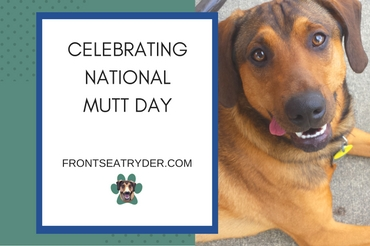 Celebrate National Mutt Day with Us!
