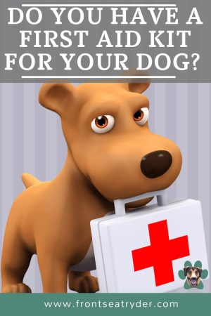 Do you have a first aid kit for your dog? Whether you are at home, hiking, camping or on the road. You need to be prepared in case of a dog emergency.