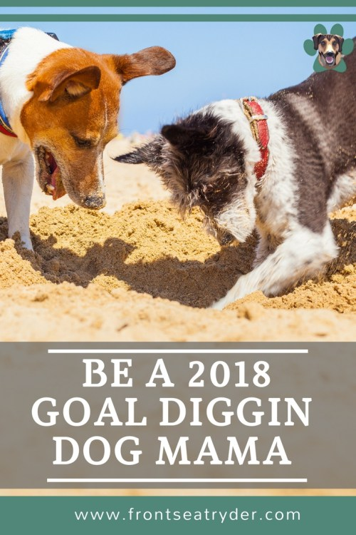 I can't believe the year is almost over! I like to take some time and reflect on what went right, what areas can improve, and start 2018 goal planning.