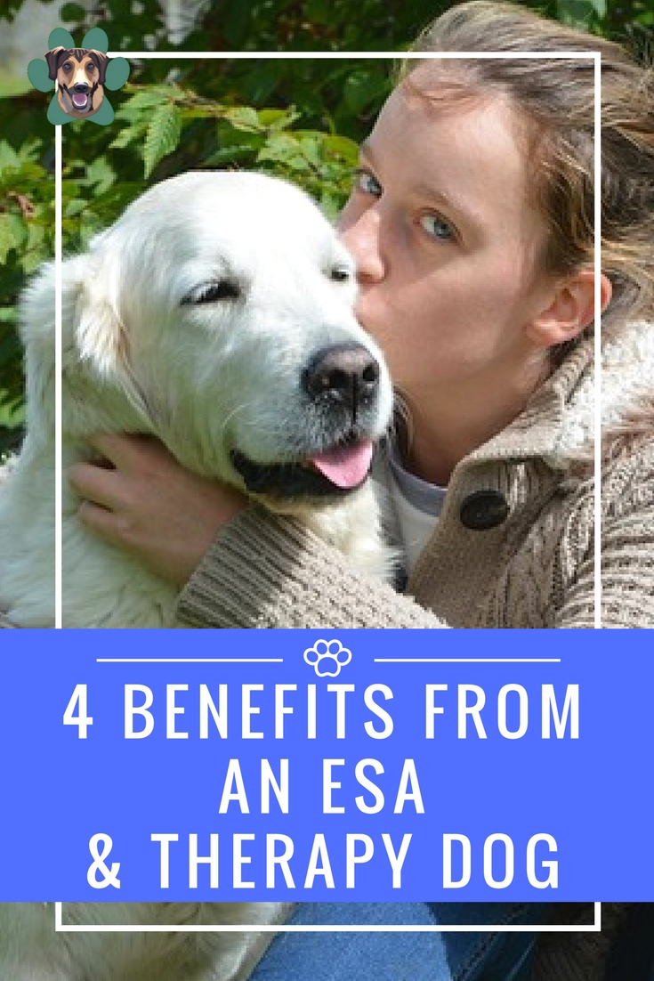I had that honor of guest posting for Obtaining Bliss on the benefits of an ESA and therapy dog. As you know, Ryder is my ESA and helps with my depression. I also outline the difference between Service Animals, ESAs, and Therapy animals.