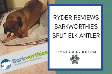 Ryder Reviews Barkworthies Split Elk Antler