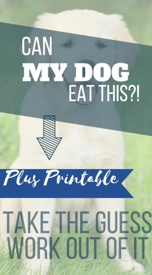 "March is Pet Poison Prevention Awareness Month. So, I found it only fitting to talk about feeding your dog table scraps. It is a fairly controversial topic among dog owners and trainers. Do you ever wonder, ""Can my dog eat this?"" I have a printable list of human foods that are and are not safe for your dog to eat."