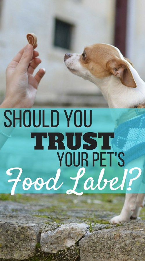 With dog food and treat recalls on the rise, should you trust your pet's food label? Reading your pet's food labels might not be enough. Here is what to look out for to keep your pets healthy and happy.