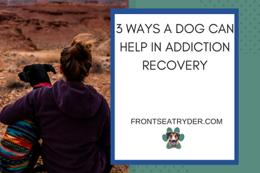 3 Ways a Dog Can Help in Addiction Recovery