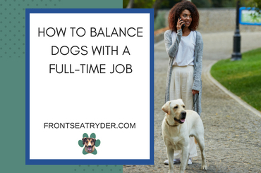 How to Balance Dogs With a Full-Time Job