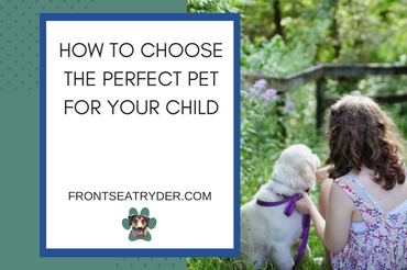 How to Choose The Perfect Pet For Your Child