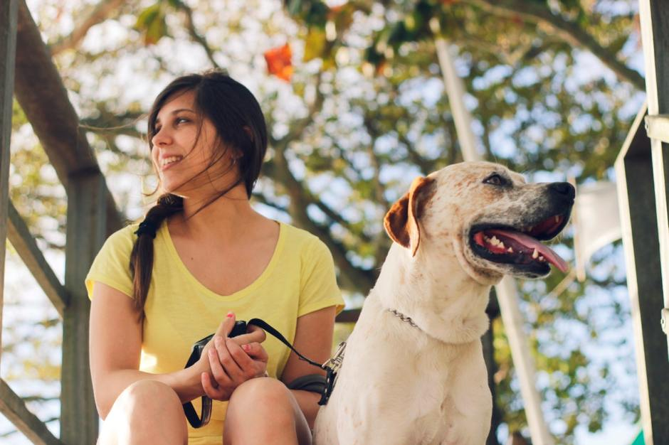Getting your very first pet is incredibly exciting. Choosing your first dog requires a little thought into what dog will be the best fit for you, and there are several things to consider.