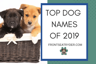 Top Dog Names Of 2019
