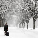 Blizzard Brings Much Of East Coast To A Standstill