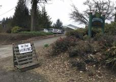 """This March 2, 2017, photo shows a sign saying """"Now Hiring"""" in front of Brooks Tree Farm near Salem, Ore. Farmers, nursery and winery owners and others who depend on immigrant labor are predicting a catastrophe as federal immigration agents focus on stepping up arrests of people who are in America illegally. (AP Photo/Andrew Selsky)"""